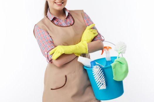 コウモリのフンを掃除する方法